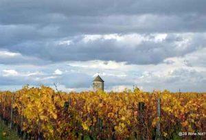 Bergerac Wine Not?